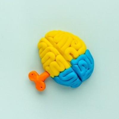 Groepslogo van Neurobehavioral stress